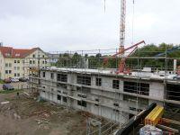 Alleenhof80